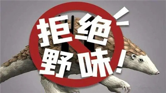 13省市出台禁野令!北京版禁野令,随意放生也要处罚!